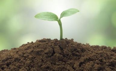 福山区土壤检测分析方法